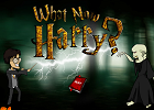 Гарри Поттер: Уроки левитации…