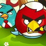 Big Angry Birds