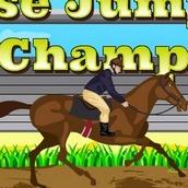 Прыжки на лошадях
