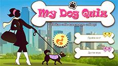 Тест: Какая собачка тебе подойдет…