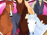 Ухаживание за лошадьми